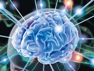 Влияние спорта на работу нервной системы